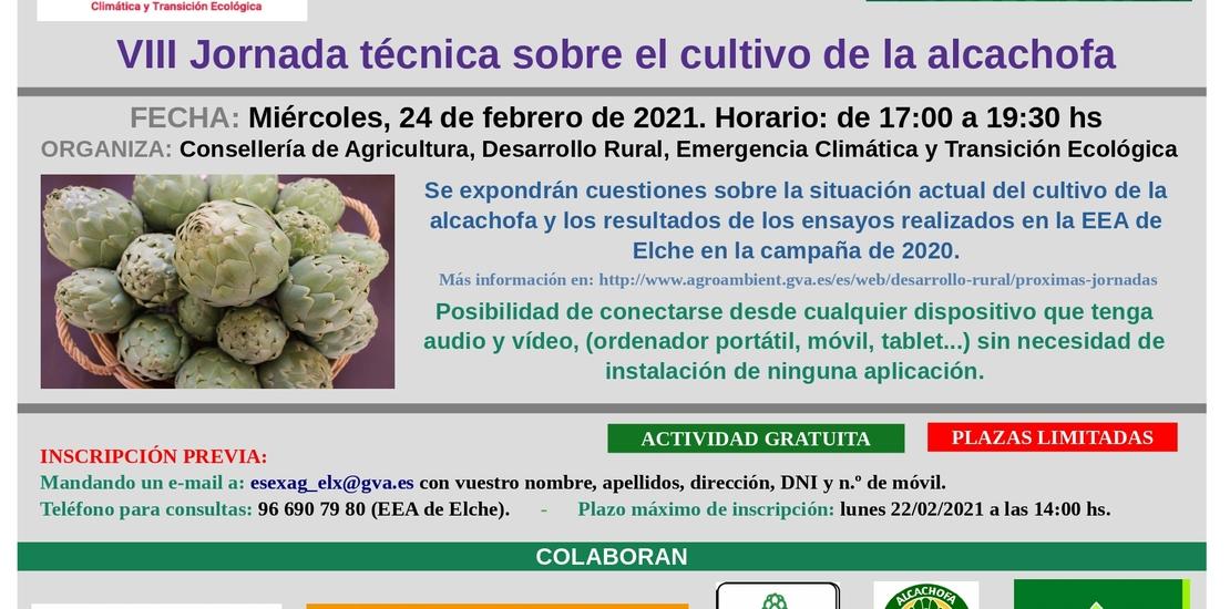Jornada técnica sobre el cultivo de la alcachofa