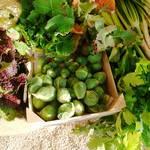 Cult Eco-Pego agricultura
