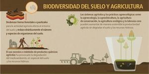 agricultura actual producción calidad