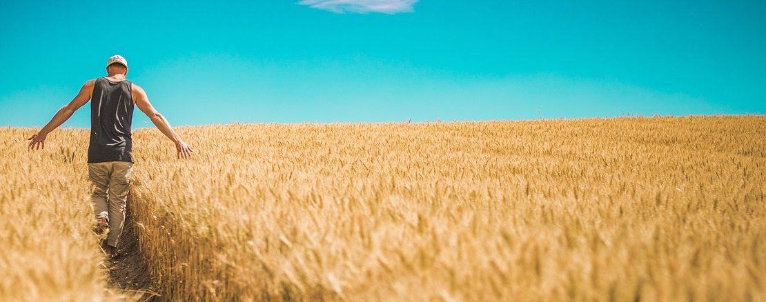 Ajuda de joves agricultors