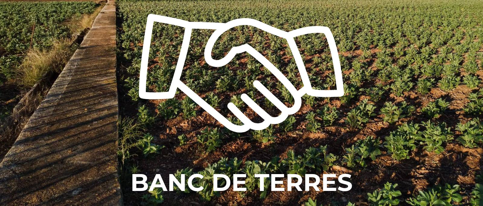 Projecte Banc de Terres