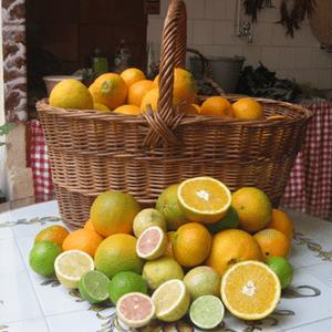 naranjas_cesta